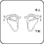 kenkou1-150x150