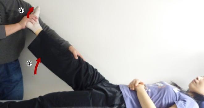 大腿二頭筋パートナーストレッチ
